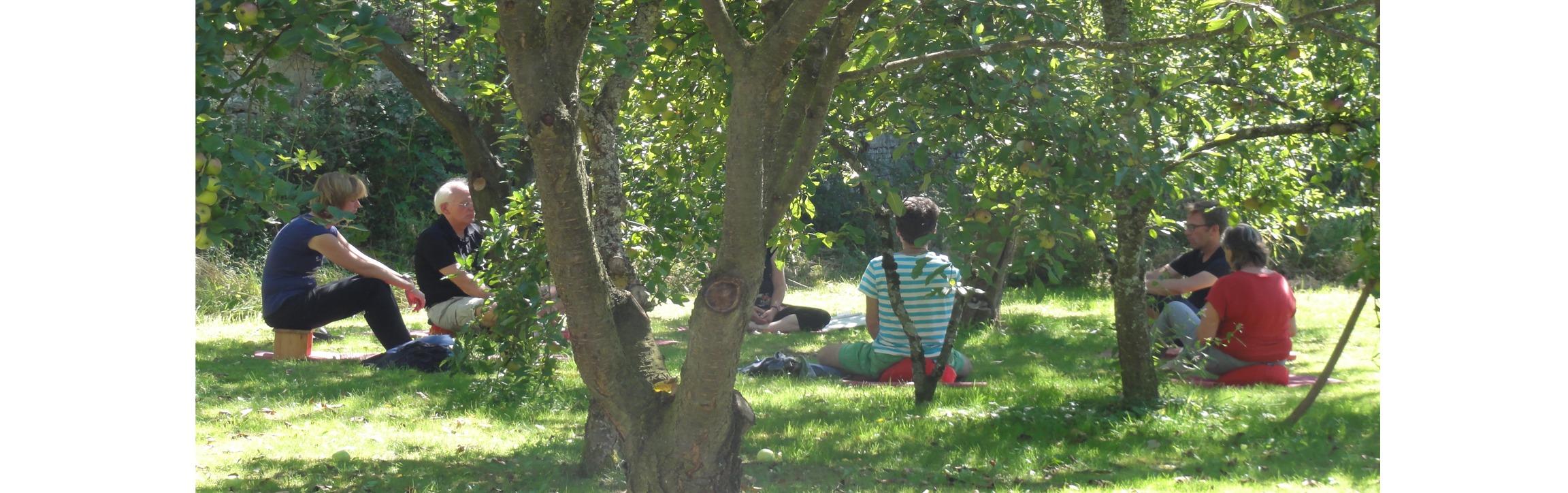 groepje mensen mediteerd tussen de bomen