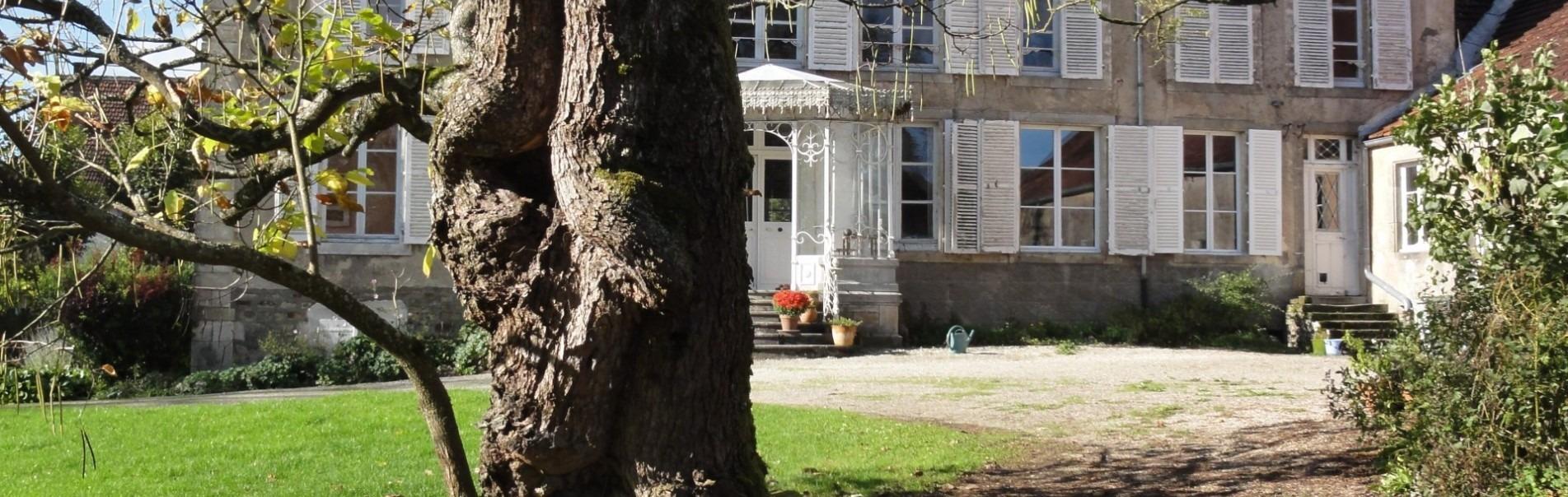 frans landhuis met serre en een oude catalpa