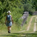 wandelaarster tussen de houtstapels op bospad