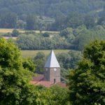 kerktoren tussen het groen