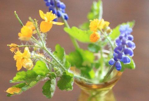 detail gele en paarse bloemen