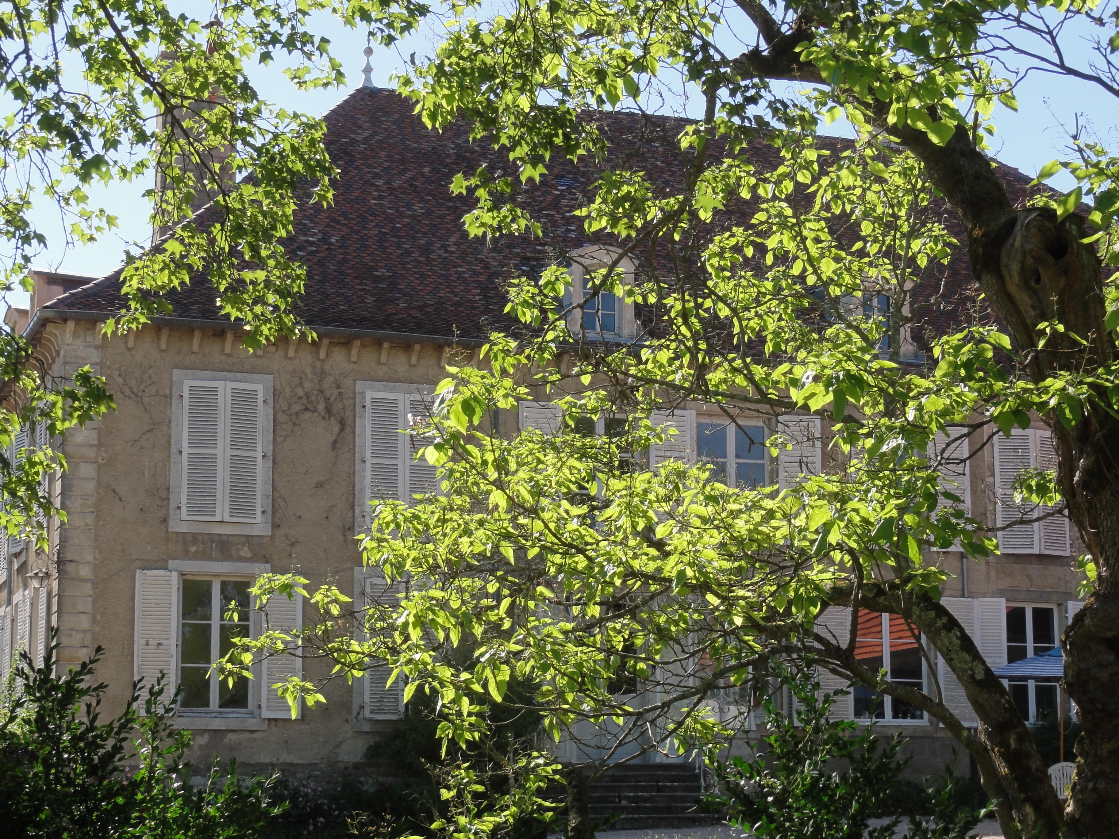 Landhuis in de zomer, met bloeiende boom op de voorgrond