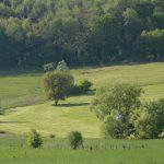 Heuvel rond Anrosey met schuurtje